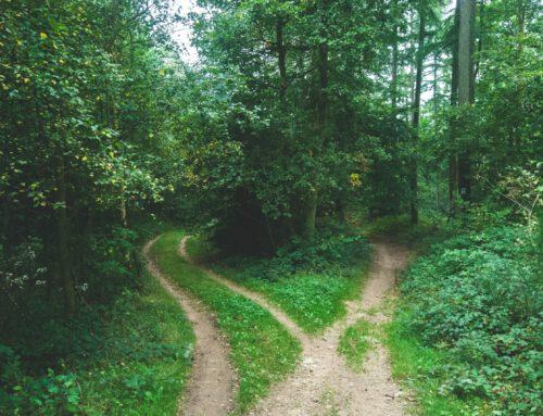 La decisión más difícil – Cómo tomar decisiones
